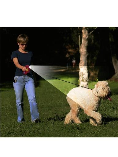 Laisse pour chien avec lampe, 3 en 1 -  - Rouge et noir