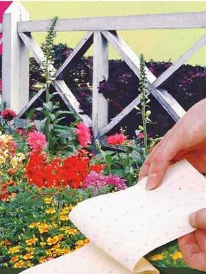 Tapis présemé de graines de fleurs