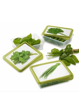 Lot de 3 boîtes pour herbes aromatiques