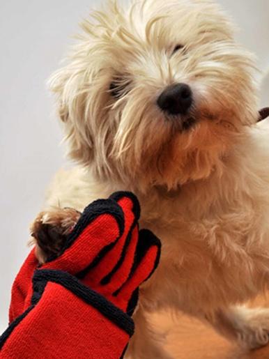 Gant en microfibre pour pattes d'animaux - Casâme - Rouge