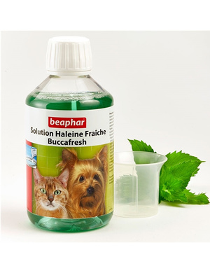 Solution haleine fraîche chiens et chats