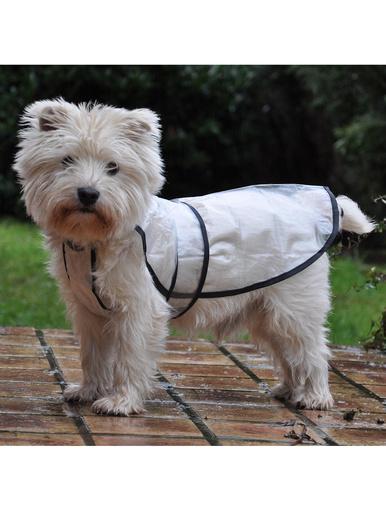 Imper pour chien - Casâme - Transparent