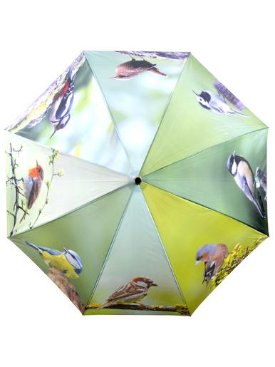 Parapluie fantaisie motifs oiseaux -  - Imprimé oiseaux