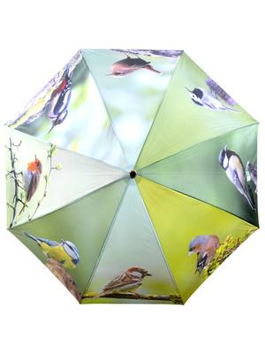 Parapluie fantaisie motifs oiseaux